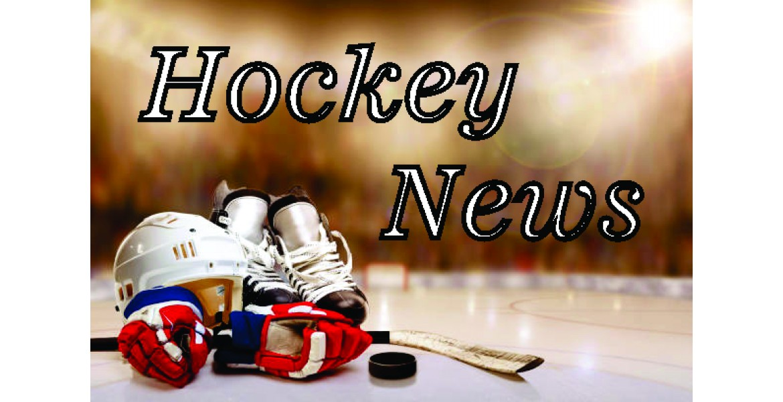 https://www.beaudieshockey.ca/os/image/cache/catalog/HockeyNews-1170x600.jpg